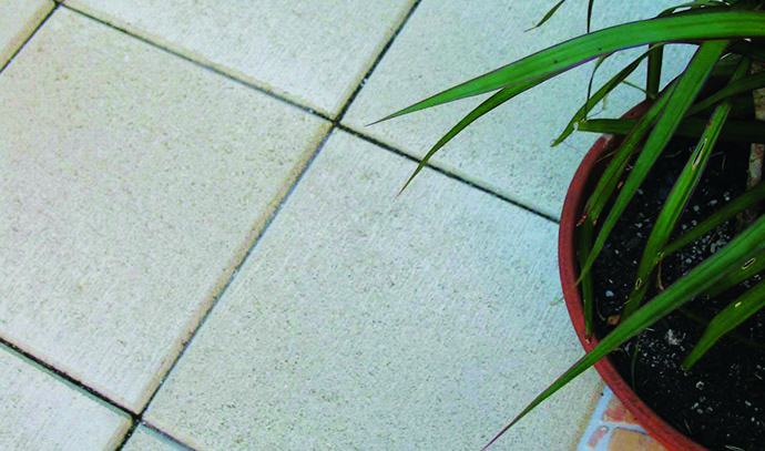haven-pave-oatmeal-tile-flooring-plant
