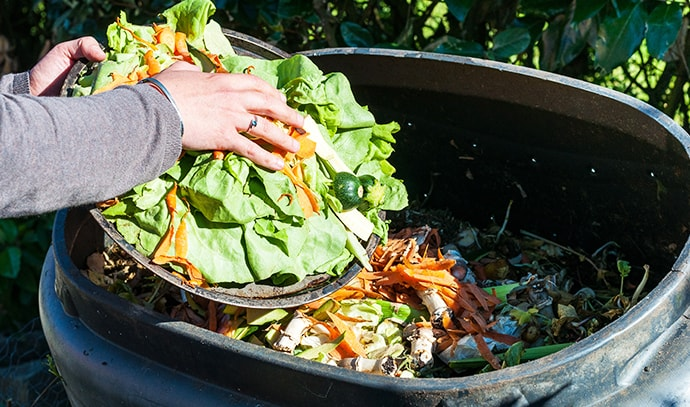 composting-kitchen-waste-food-vegetables-trash-bin