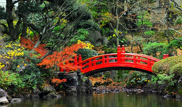 japanese-garden-red-bridge-foliage-water-river-trees-nature