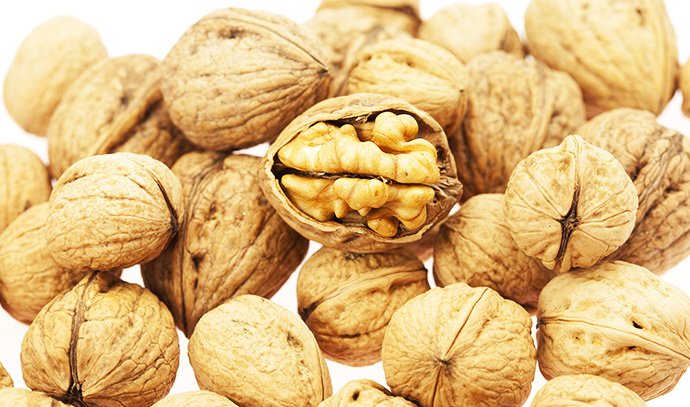 walnuts-isolated-white-background